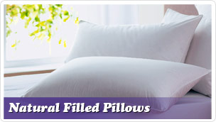 Natural Filled Pillows