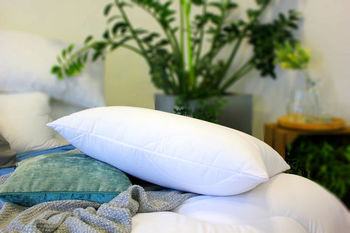 Fine Bedding Company Eco Pillow Quilted